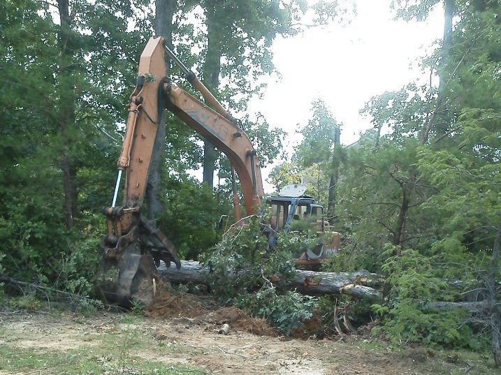 land clearing in southern md