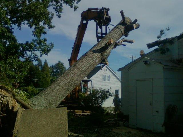 tree-removal-service-southern-md-mechanicsville-st-marys-county